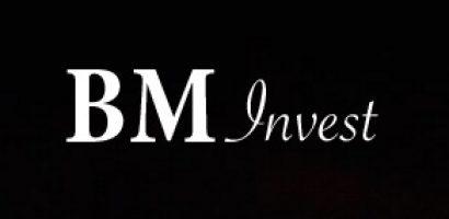 Доходные инвестиции в бизнес c BM invest